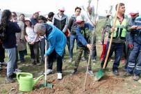 KITAP FUARı - 20 Bin Kişinin Katılımıyla 10 Bin Fidan Toprak İle Buluştu