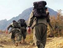 Terör örgütü PKK'nın Ağrı Dağı grubuna ağır darbe