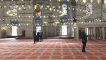 MANEVİ KIZI - 8. Kuşak Torunundan Mimar Sinan'a Dua
