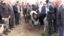 Ağrı'da 'Meyve Yetişmez' Algısını Değiştirecek Proje