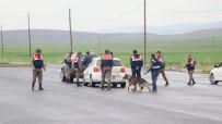 Aksaray'da Jandarma Ekiplerinden Uygulama