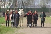 TÜRKIYE JOKEY KULÜBÜ - Dokunmaya Korktukları Atların Seyisi Oldular
