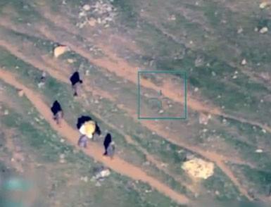 PKK'nın katıra işkencesi görüntülendi