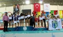 VEHBİ KOÇ VAKFI - Okul Sporları Artistik Cimnastik Türkiye Şampiyonası Sona Erdi
