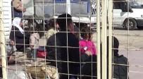 Suriyeliler Fırat Kalkanı Ve Zeytin Dalı Harekatlarıyla Teröristlerden Temizlenen Bölgelere Gidiyor