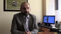 Türkiye'de Görüntülenen Kuş Türü Sayısı Arttı