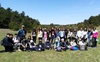 KÜRESEL ISINMA - Öğrenciler Ormanda Güzel Bir Gün Geçirdi