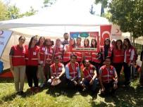 KÖK HÜCRE - Üniversite Öğrencileri Ve Akademisyenler Kan Bağışında Bulundu
