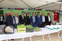MUSTAFA GÜLER - Çiftçiler Şenlikte Buluştu