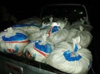 İNCİ KEFALİ - Erciş'te 900 Kilo Kaçak Balık Ele Geçirildi