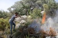 ZEYTINLIK - Fethiye'de Zeytinlik Alanda Yangın