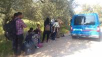 Çanakkale'de 23 Kaçak Göçmen Yakalandı