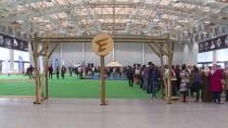 KAZANCı - 'Festivale Gayet İyi Bir Başlangıç Yaptık'