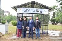 SOKAK KÖPEKLERİ - İzmit Belediyesi'nde Yahya Kaptan'a Kedi Evi