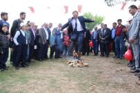 HıDıRELLEZ - Başkan Şahin Açıklaması 'Bol Bereketli Günler Bizi Bekliyor'