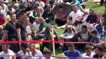 YAĞLI GÜREŞ - Etno Fest Yağlı Güreş Turnuvası