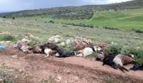 BAHÇECIK - Mardin'de Yıldırım Çarpan Çoban Ağır Yaralandı