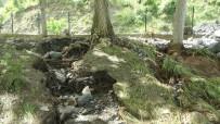 KARAÇAY - Osmaniye'de Sel Mesire Alanına Zarar Verdi