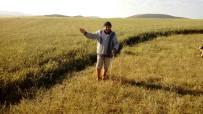 SEVINDIK - Sağanak Yağış Köylüleri Sevindirdi
