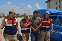 AFRİN - Suriye Sınırında PKK'lı Terörist Yakalandı