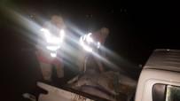İNCİ KEFALİ - Van'da Kaçak Avlanmış Bir Ton Balık Ele Geçirildi