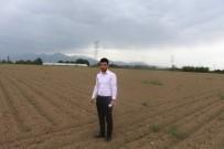 HASAN YıLDıZ - ANTBİRLİK'in Desteklediği Çiftçi Pamuğa Yöneldi