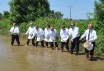 ALİ FUAT TÜRKEL - Bafra Ovası'nda Çeltik Tohumları Suyla Buluştu