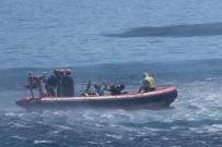 DENİZ KUVVETLERİ - Deniz Aslanı-2018 Başarıyla Sona Erdi