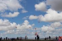 AİLE DANIŞMA MERKEZİ - Elazığ'da 'Engelsiz Uçurtma Şenliği'