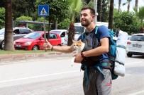 KARABÜK ÜNİVERSİTESİ - Göğsündeki Kedisiyle Otostop Çekip Türkiye'yi Dolaşıyor