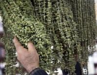 ÜMİT AKTAŞ - İftarda 'Bamya Tüketin' Önerisi