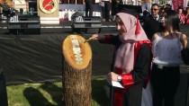 MEHTER TAKIMI - Kastamonu Üniversitesinde Mezuniyet Töreni