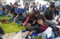 TARLABAŞı - Ramazan Ayı Öncesi Sebze Ve Meyveyi Bedava Dağıttı