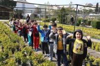 KıBRıS - Şehrin Kalbinde Betonlar Arasında 94 Yıllık Oksijen Deposu