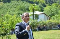 FERDA YILDIRIM - Güney Açıklaması 'Fındığa Alternatif Ürün Yok'
