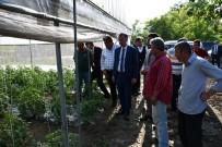 İnegöl Belediye Başkanı Taban Açıklaması 'Tarım Modası Geçmeyen Tek Sektördür'