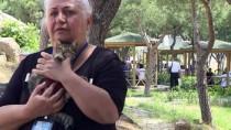 ATATÜRK EĞİTİM VE ARAŞTIRMA HASTANESİ - İzmir'in Kedisever Hemşiresi