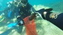 MAVI YOLCULUK - 19 Koyda Gerçekleşen Deniz Dibi Temizlik Çalışmaları Sona Erdi