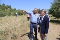 MALZEME DEPOSU - Başkan Şirin'in Söz Verdiği Projede Geri Sayım Başladı