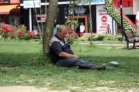 HAVA SICAKLIKLARI - (Özel)Ramazan'ın İlk Gününde Vatandaşlar Gölgelik Alanlara Akın Etti