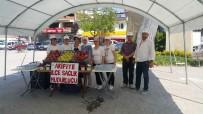 İSMAİL KARAKULLUKÇU - Arifiye'de 'Dünya Hareket Günü' Adına Etkinlik Düzenlendi
