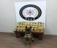 BİTLİS - Detektör Köpek 73 Kilo Eroini Buldu