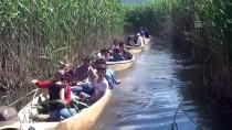 KOCATEPE ÜNIVERSITESI - Eber Gölü Doğa Tutkunlarını Ağırlıyor
