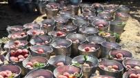 GIDA KONTROL - Aydın'da Proje Bahçelerinde Şeftali Hasadı Başladı