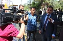 KURTARMA OPERASYONU - Elbiz Caddesindeki Çınar Ağaçlarını Kurtarma Operasyonu