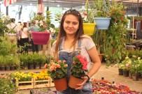 BOSTANLı - Karşıyaka Çiçek Açtı