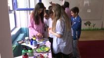 KREDI VE YURTLAR KURUMU - Üniversite Öğrencileri Okulların Onarımında Çalışıyor