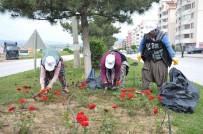 FATIH SULTAN MEHMET - Yeşil Alanlarda Bakım Çalışmaları Hız Kazandı