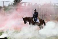 KAPADOKYA - Jandarmanın Atları Özel Görevler İçin Hazırlanıyor