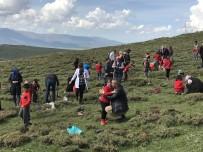 SINIF ÖĞRETMENİ - Şehit Üsteğmen İsmail Aksu İlkokulu'ndan Ağaç Dikim Etkinliği